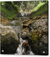Donner Creek Acrylic Print
