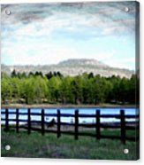 Don't Fence Me In Acrylic Print
