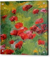 Door County Poppies Acrylic Print