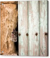 Door Detail  Acrylic Print