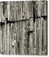 Door Latch And Hinges 3 Acrylic Print