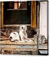 Doorkeep Acrylic Print