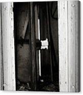 Doorway In Cuervo Acrylic Print