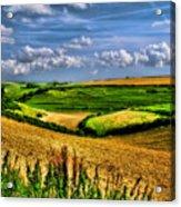 Dorset Farmland Acrylic Print