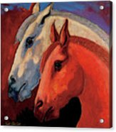 Dos Equus Acrylic Print by Bob Coonts