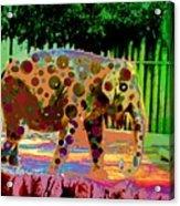 Dottie Acrylic Print