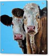 Double Dutch Acrylic Print by Laura Carey