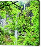 Double Falls 2 Acrylic Print