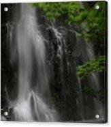 Double Falls Acrylic Print