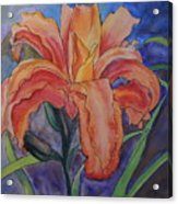 Double Lily Acrylic Print