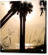 Double Palms Acrylic Print