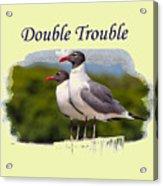 Double Trouble 2 Acrylic Print