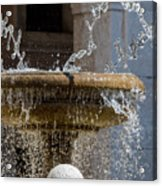 Water Of The Doves Acrylic Print