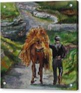 Down A Country Lane Acrylic Print