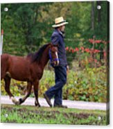 Down A Country Road Acrylic Print by Linda Mishler
