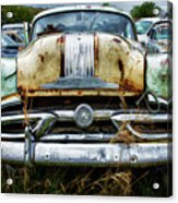 Down In The Dumps 2 Acrylic Print