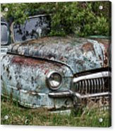 Down In The Dumps 20 Acrylic Print