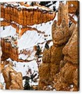 Down Into The Canyon Acrylic Print