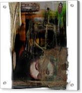 Down Acrylic Print
