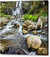 Downstream From Chittenango Falls Acrylic Print