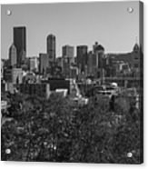 Downtown Pittsburgh In Black And White Acrylic Print