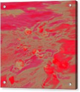 Dp Stone Impressions 26 Acrylic Print