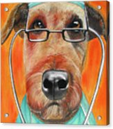 Dr. Dog Acrylic Print by Michelle Hayden-Marsan