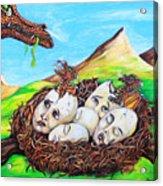 Dragon Babies Acrylic Print
