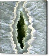 Dragon Eye Agate Druzy Acrylic Print