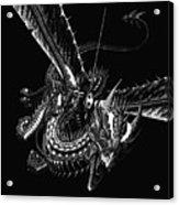 Dragon Knight Acrylic Print