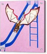 Dragon On Slide Acrylic Print