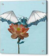 Dragon Peeks Around Flower Acrylic Print