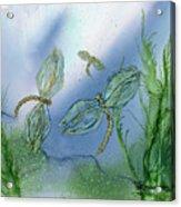 Dragonflies At Dusk Acrylic Print