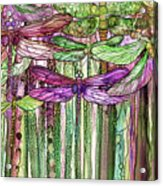 Dragonfly Bloomies 2 - Pink Acrylic Print
