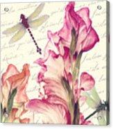 Dragonfly Morning II Acrylic Print