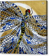 Dragonfly On Gold Scarf Acrylic Print