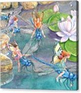 Dragonfly Races Acrylic Print
