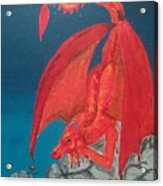 Dragons Love Acrylic Print