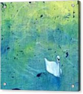 Drake Park Swan Acrylic Print