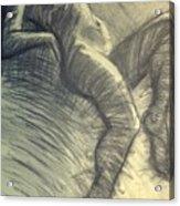 Dramatic 5 - Female Nude  Acrylic Print