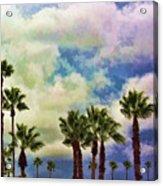 Dramatic Palms Acrylic Print