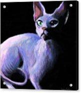 Dramatic Sphynx Cat Print Painting Acrylic Print