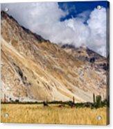 Drass Village Agriculture Kargil Ladakh Jammu And Kashmir India Acrylic Print