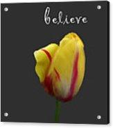Dream Believe Achieve Acrylic Print