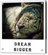 Dream Bigger Acrylic Print