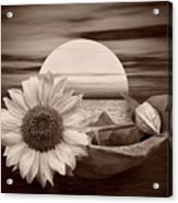 Dream Boat Acrylic Print