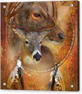 Dream Catcher - Autumn Deer Acrylic Print