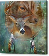 Dream Catcher - Spirit Of The Deer Acrylic Print