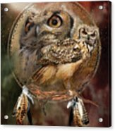 Dream Catcher - Spirit Of The Owl Acrylic Print