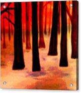 Dream  Forest Acrylic Print